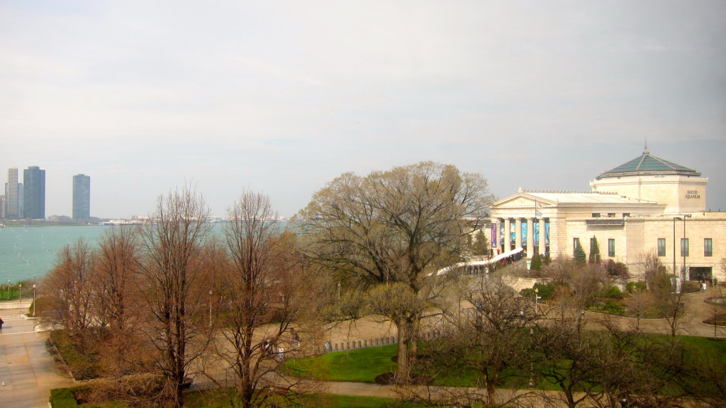 View of the Shedd Aquarium, lake shore, and city from the vantage of the Field Museum.