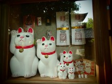 All the different sizes of the Lucky Cat