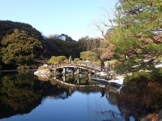 Beautiful bridge in the Japanese garden