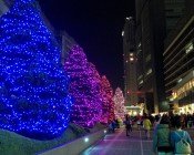 Shinjuku Illuminations