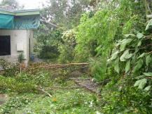 Debris at home