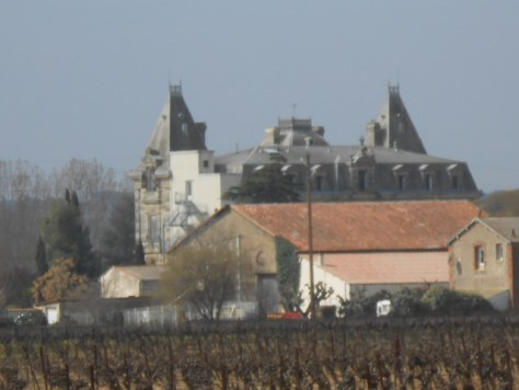 chateau and vines