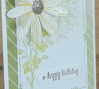 Daisy Delight and Touches of Texture