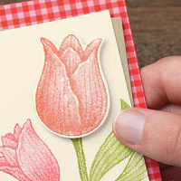 Timeless Tulips: Perfect For Spring