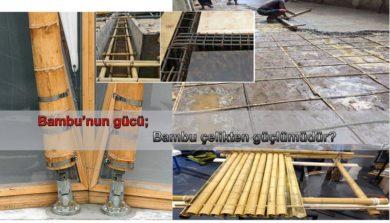 Bambu'nun Gücü