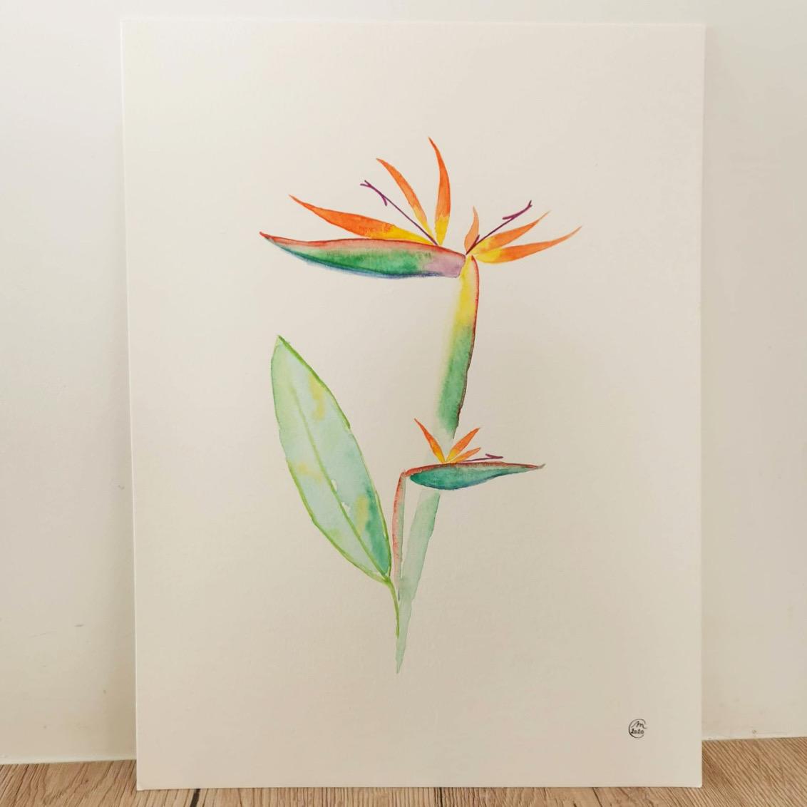 aquarelle fleurs oiseau du paradis