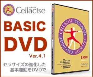 ベーシック(Basic)DVD Ver 4.1