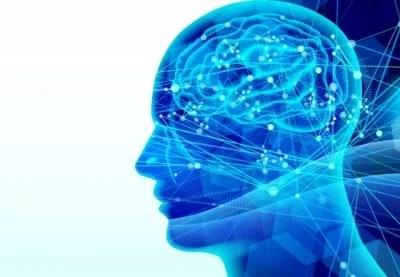 セラサイズ 神経接続