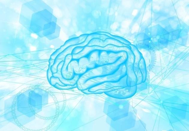脳の血流を増やす方法