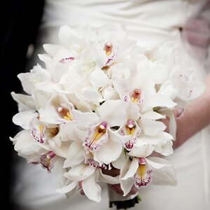 sydney-wedding-flower-florist-packages-price-bouquet-orchids