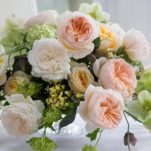 sydney-wedding-flowers-florist-package-price-david-austin-rose