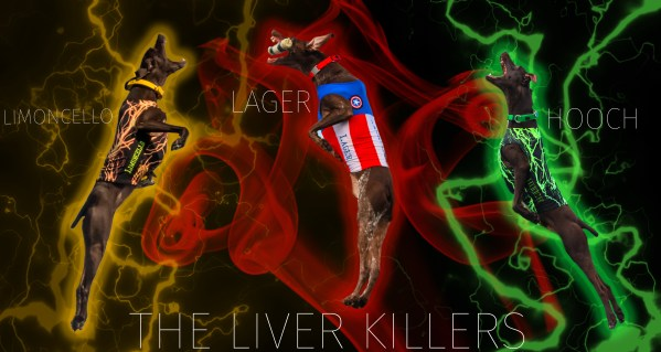 67304085-liverkillers