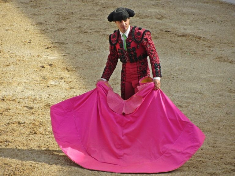 rsz_1torero-1078423_1920.jpg?fit=768%2C576&ssl=1
