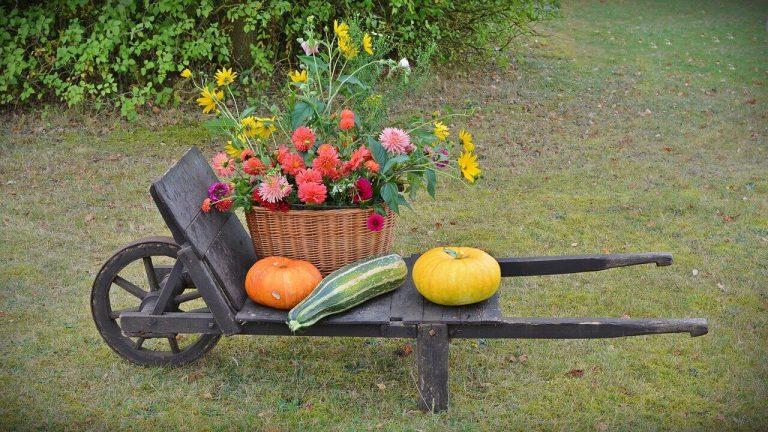 Es una decoracion otonal en un jardin de una carretilla con calabazas y una canasta de flores
