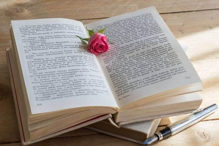 Es un libro abierto con una flor roja enmedio