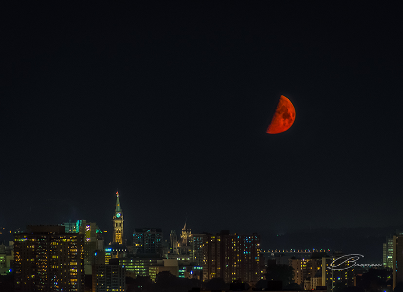 Last Night, the Moon