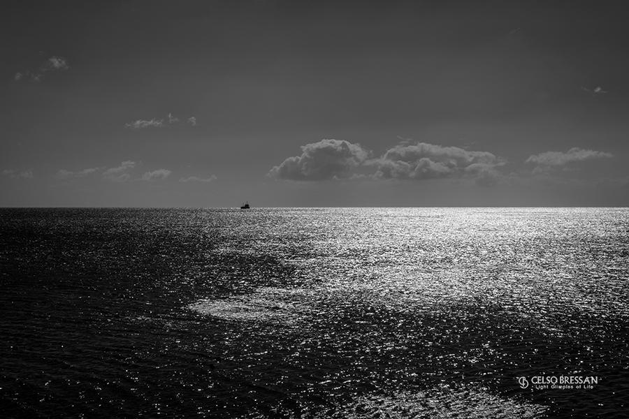 Glimpses of Grey