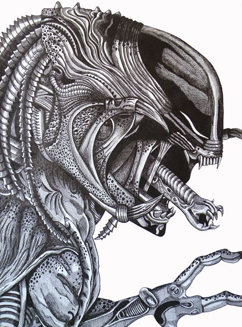 Predator drawing