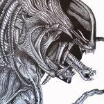 Predator drawing