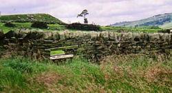 Landschaftsaufnahme Schottland