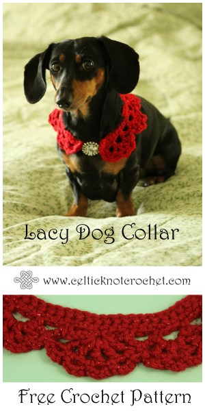 Lacy Dog Collar Celtic Knot Crochet