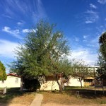 MODE APARTMENTS COMPLETES 20TH MULTIFAMILY ACQUISITION IN PHOENIX MARKET