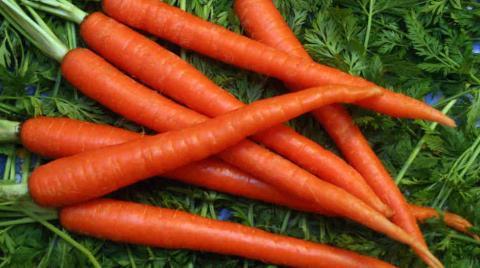 manfaat vitamin c bagi kesehatan tubuh manusia