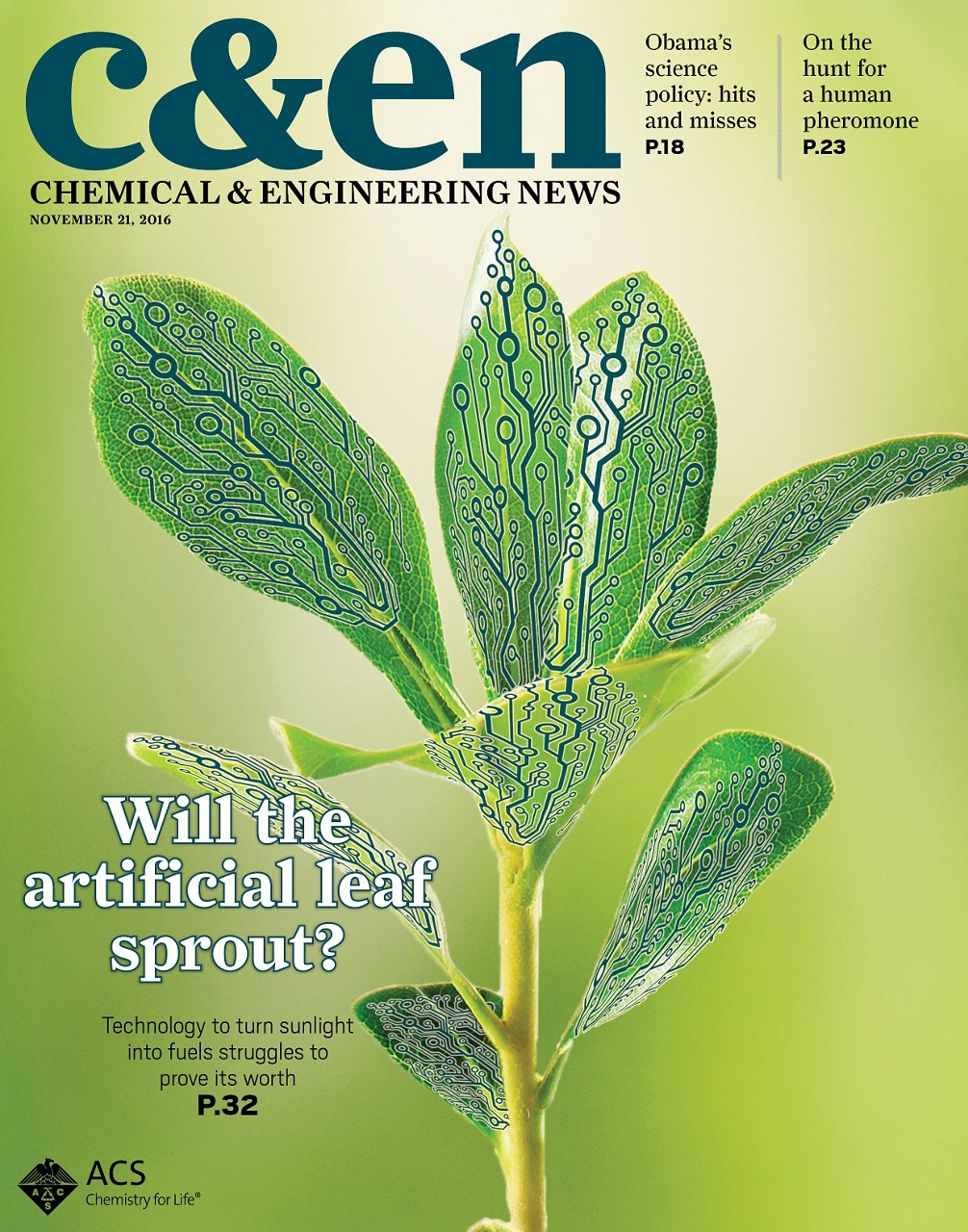 """Image result for """"Will the artificial leaf sprout?"""""""