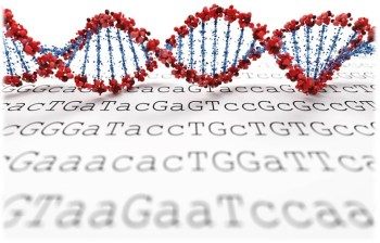 genome sequencing-web