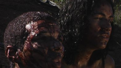 Photo of Mangue Negro