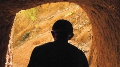 Photo of O Bagre Africano de Ataléia
