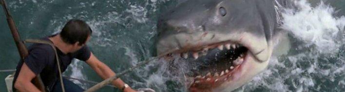 Terros nas plataformas de streaming: Tubarão