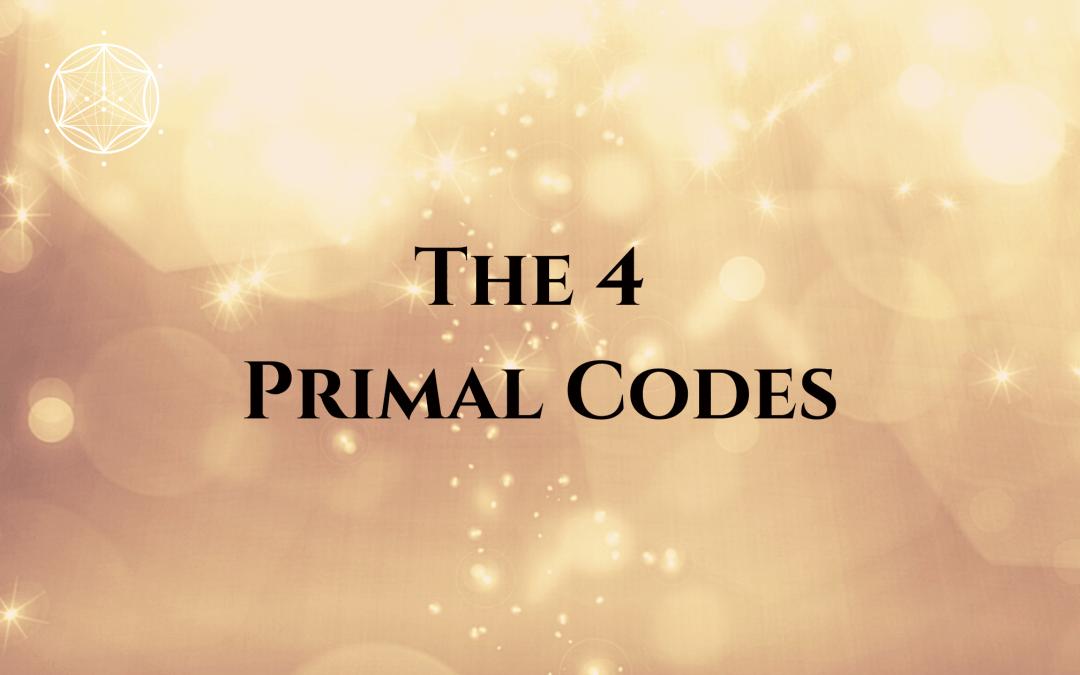 The 4 Primal Codes