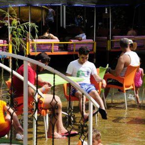 Alanya Dimçayı Doğal Güzellikleri Cennet Vadisi Restaurant (52)