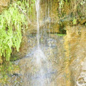 Alanya Dimçayı Doğal Güzellikleri Cennet Vadisi Restaurant (6)