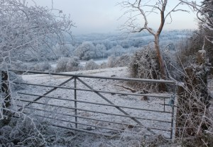 """Winter Fence"" by MEJones is a royalty-free image from stock.xchng"