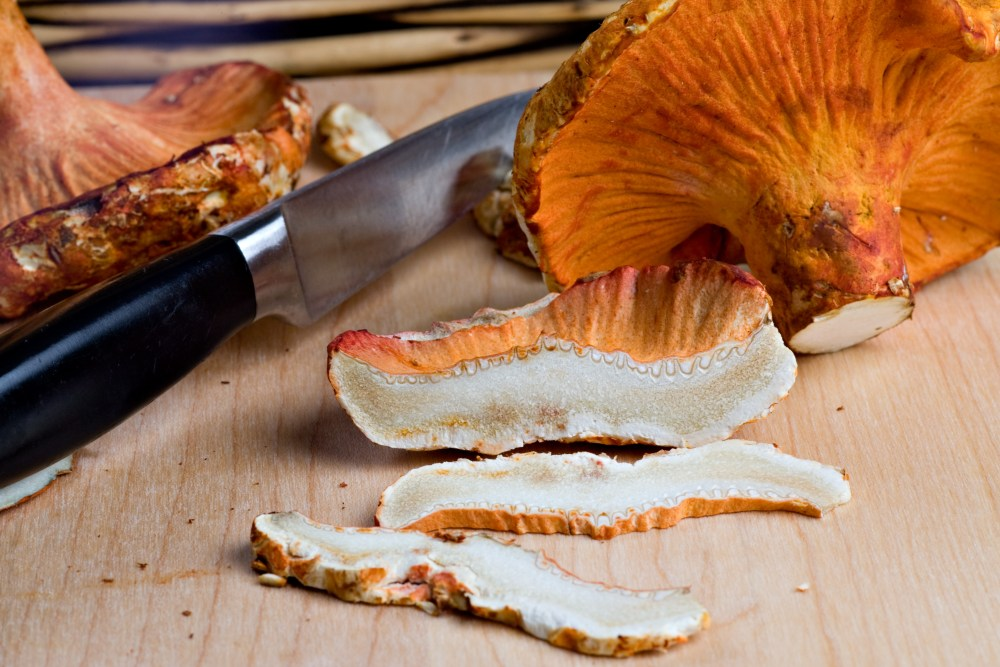 Mushrooms_Fresh-Lobster_MFLOB004_VA0
