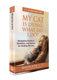 My Cat Is Dying What Do I Do