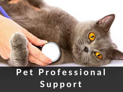 pet professional support page