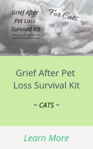 Grief after pet loss for cats