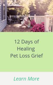 12 Days of Healing Pet Loss Grief