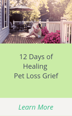 12 Days of Healing Pet Loss Grief
