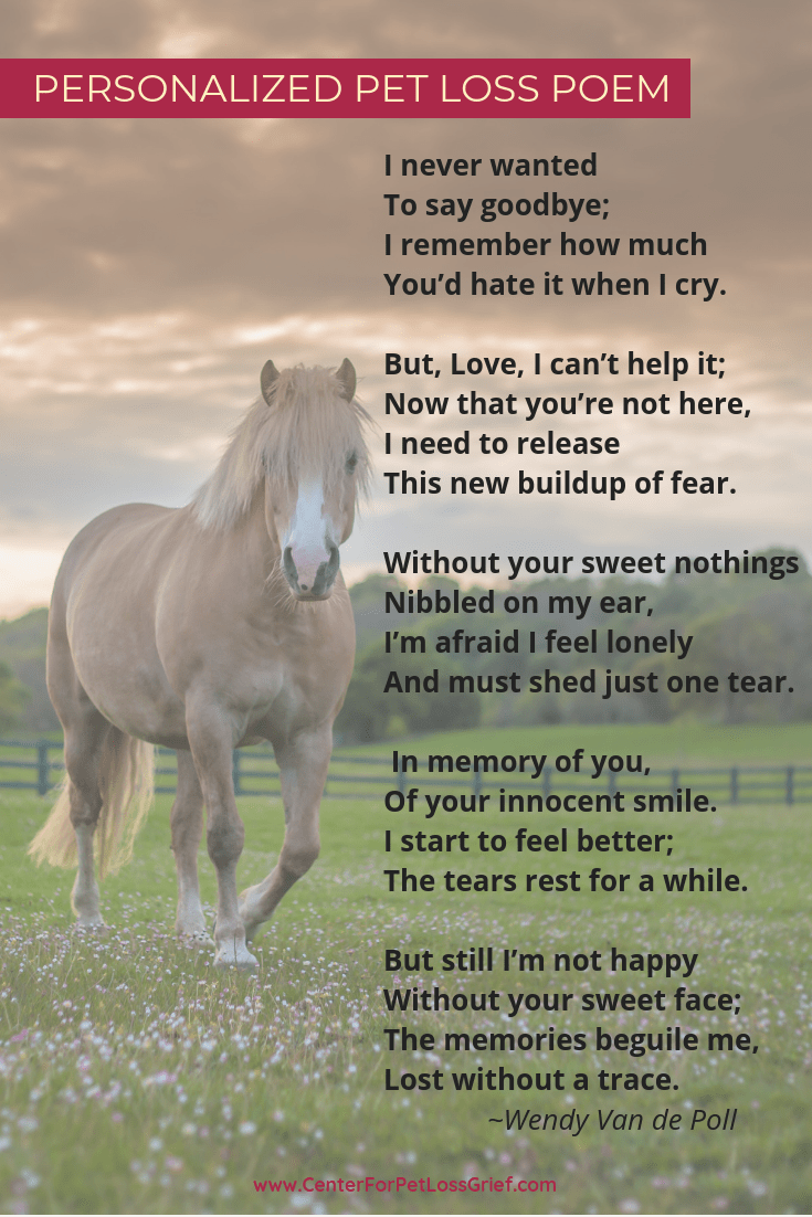 Personalized Pet Loss Poem