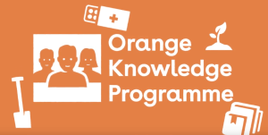 Scholarship Abroad | Orange Knowledge Programme in The Netherlands