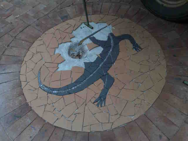 tiled mosiac goanna courtyard renovation wamberal