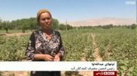 IWMI's work in Tajikistan featured on BBC Persian News Channel