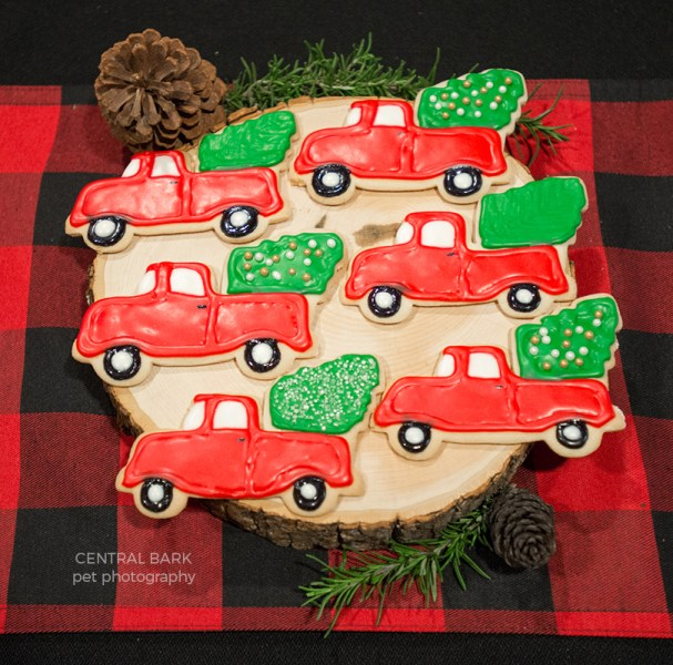 Dog birthday party human treats of red vintage truck sugar cookies