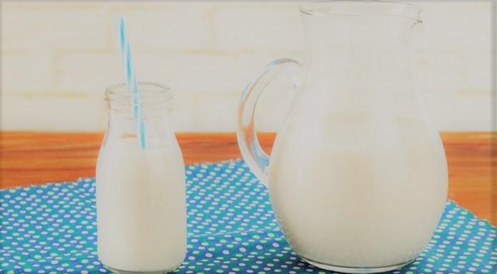 Kefir com leite