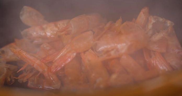 casca de camarão