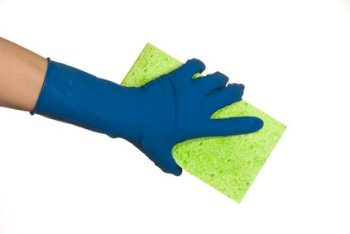 Germs in the home